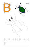 Trace game for letter B, beetle Stock Photography