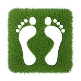 Trace of human foot on green grass. 3d rendering on white background Stock Image