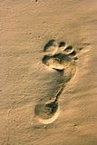 Trace of a human foot in the sand. Footprint of a naked human foot in the sand Royalty Free Stock Photos