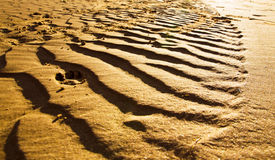 Trace on sand Stock Image
