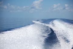 Trace in the water. Trace of motor boats in the water royalty free stock photography