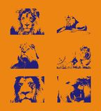 Traced blue lion figures on an orange background stock illustration