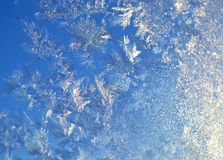 Tracery from the frost Royalty Free Stock Image