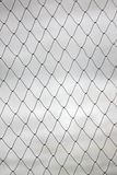 Tracery of netting. Royalty Free Stock Images
