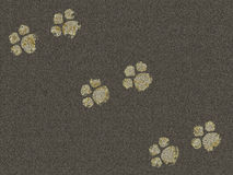 Traces of the animal on the pavement Stock Images