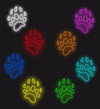 Traces of animals Royalty Free Stock Photo