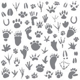 Traces of animals. Vector illustration.  on white background Stock Photo
