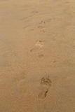 Traces of bare feet on the sand beach Royalty Free Stock Image