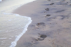 Traces of bare feet on wet sea sand Royalty Free Stock Photos