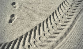 Traces on the beach sand Royalty Free Stock Photo