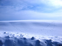 Traces , colors and shadows of snow Royalty Free Stock Photo