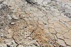 Traces des bandes de roulement de pneu sur la terre criquée sèche photos libres de droits