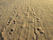 Traces des pieds sur à sable jaune Photographie stock