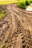 Traces dirt road Royalty Free Stock Images