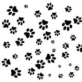 Traces dogs Stock Images