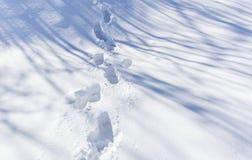 Traces of feet on the fresh snow Stock Photos