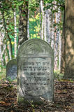 Traces of Jewish Warsaw - Brodno cemetery Royalty Free Stock Photos