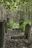 Traces of Jewish Warsaw - Brodno cemetery Royalty Free Stock Images