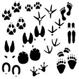 Traces of man, animals and birds. On white background Royalty Free Stock Photo