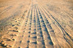Traces of the protectors on the sea beach royalty free stock images