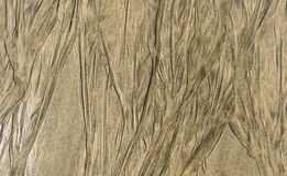 Traces of retracting water on sandy beach texture pattern. Pattern of waves left in the wet sandy beach background photo stock photo
