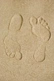 Traces on sand Stock Images