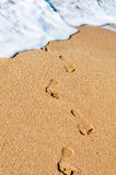 Traces on sand. Ocean Stock Images