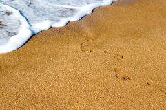 Traces on sand. Ocean Stock Photo