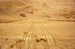 Traces sled on sand Royalty Free Stock Images