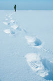 Traces On Snow Royalty Free Stock Images
