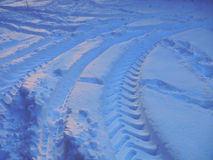 Traces on snow Royalty Free Stock Photo