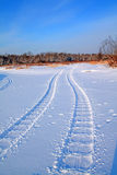 Traces on snow Stock Photography