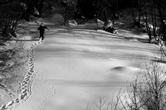 Traces on the snow. Skier walking in the forest Stock Photo