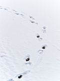 Traces on snow. River, ice, winter Stock Photography