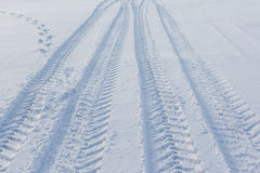 Traces on a snow Stock Photography