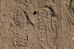 Traces of soles Royalty Free Stock Photos