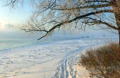 Traces sur la neige Images libres de droits