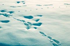 Traces sur la neige photographie stock