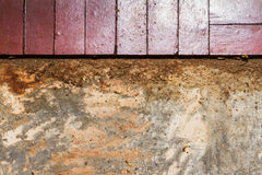 Traces of termites on old wood background. Stock Image