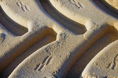 Traces of tires on the yellow sand, macro, morning stock images
