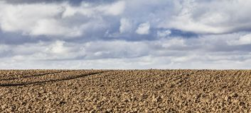 Agricultural Abstract Stock Images