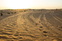 Traces of the tread at the desert Royalty Free Stock Images
