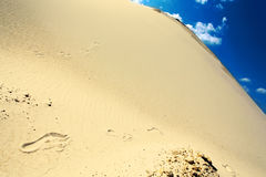Traces on yellow sand Stock Image