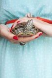 Trachemys scripta Słodkowodny czerwony słyszący żółw w kobiecie wręcza s fotografia royalty free