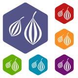 Trachyspermum ammi icons set hexagon Royalty Free Stock Images