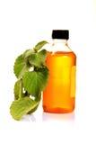 Trachyspermum ammi oil Stock Photo