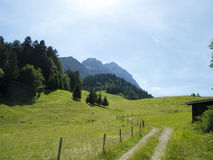 Track through alpine pasture. Country road somewhere in the mountains Stock Photos