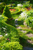 Track in beautiful garden Royalty Free Stock Photo