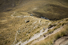 Track on Ben Lomond Royalty Free Stock Images