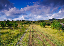 Track through countryside Royalty Free Stock Photography